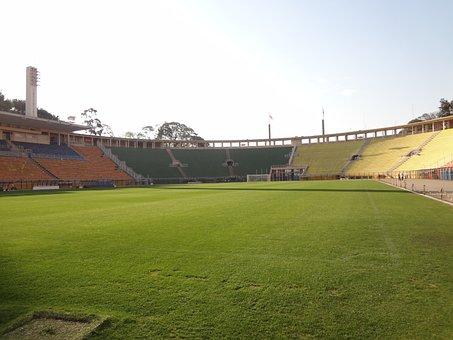 Lawn, Football Stadium, Pacaembu, São Paulo