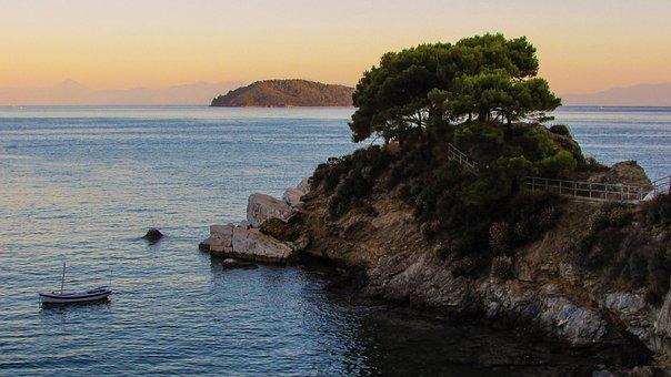 Greece, Skiathos, Plakes, Cape, Rock, Pines, Afternoon