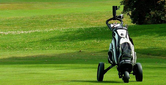 Caddy, Recovery, Fitness, Golf, Golf Ball, Golf Club