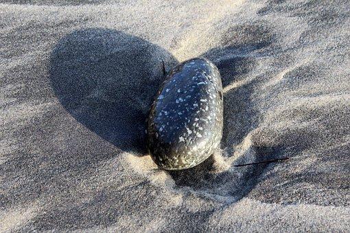 Stones, Beach, Sandy Beach, Sand, California, San Diego