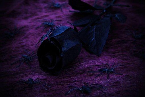 Background, Black, Dark, Decoration, Evil, Floral