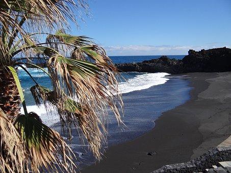 Spain, Canary Island, La Palma, Beach, Palm, Sea