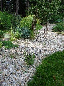Dry Creek Bed, Garden, Rocks, Landscape, Wilderness