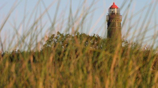 Lighthouse, Borkum, Dunes, Salt Meadow, Meadow