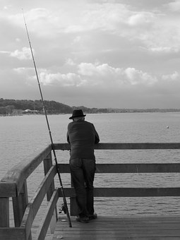 Fish, Baltic Sea, Timmendorfer Beach, Sea, Man, Rest