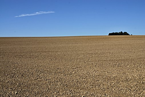 Field, Country, Lumps, Horizon, Cloud, Forest, Blue Sky