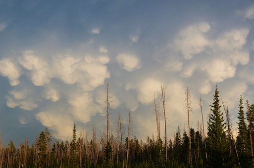 Mammatus Clouds, Sky, Landscape, Cloud Formations