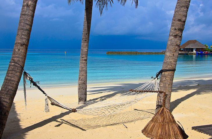 Beach, Hammock, Tropical, Sea, Paradise, Sand, Palm