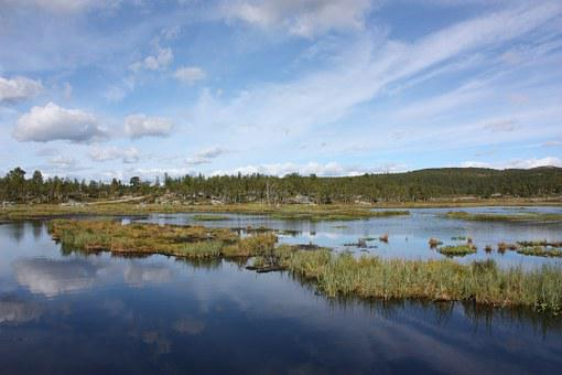 Landscape, The Nature Of The, Water, Norway, Sky