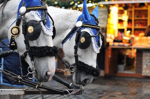 Horses, Animals, Horse Buggy, Prague, City, Travel