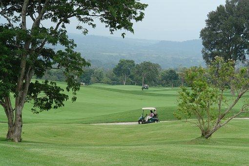Golf, Golf Buggies, Sport, Hobby, Course, Leisure