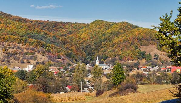 Fall, Landscape, Nature, Autumn, Forest, Outdoor, Park