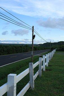 Road, Railings, Electric Post