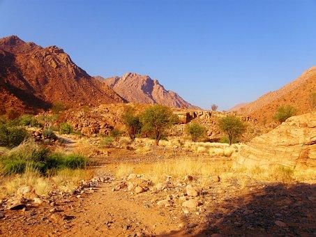 Shrubs, Rocks, Green, Sand, Cliffs, Hills, Stone
