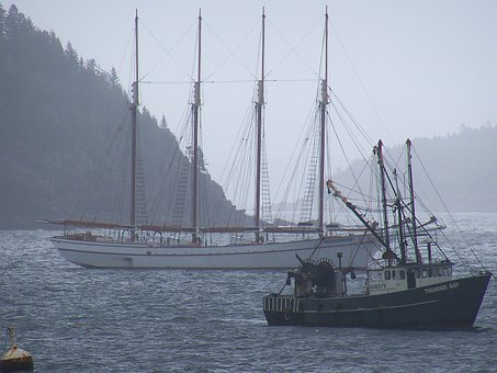 Anchor, Anchored, Boat, Boats, Ship, Ships, Vessel