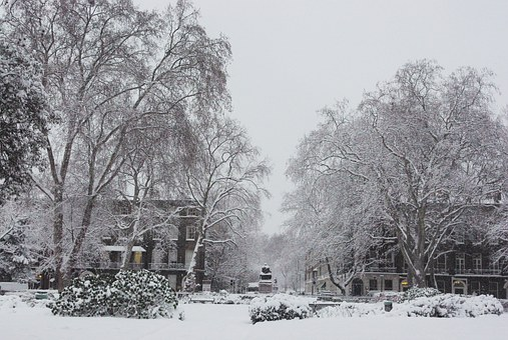 Snow, London, City, Bloomsbury, Square, Winter, English