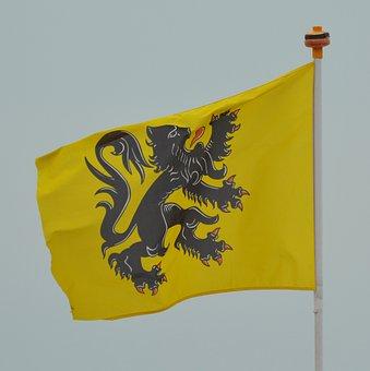 Flag, Flemish Lion, Flanders