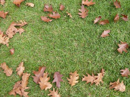 Leaves, Fall, Grass, Autumn, Border, Leaf