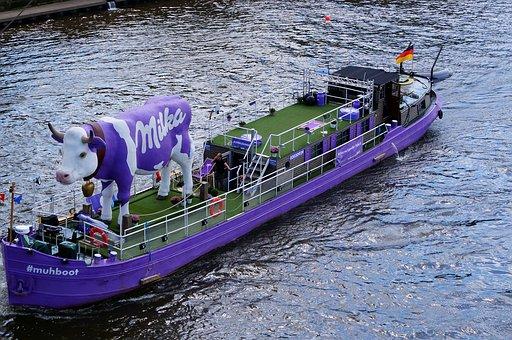 Milkakuh, Purple, Boot, Elbe, Advertising, Ad Ship, Cow