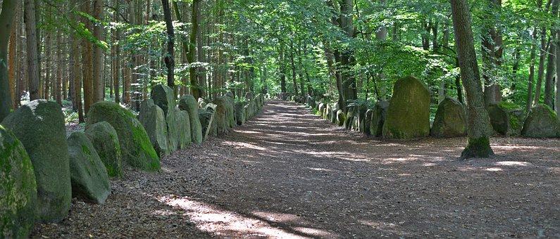 Memorial, Path, Away, Saxony Hain, Promenade, Forest