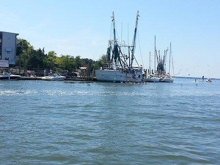 Shrimper, Shrimp Boat, Water, Boat