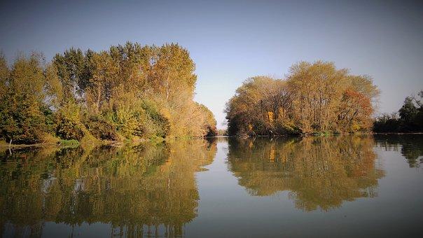 The Little Danube, River, Slovakia, Autumn