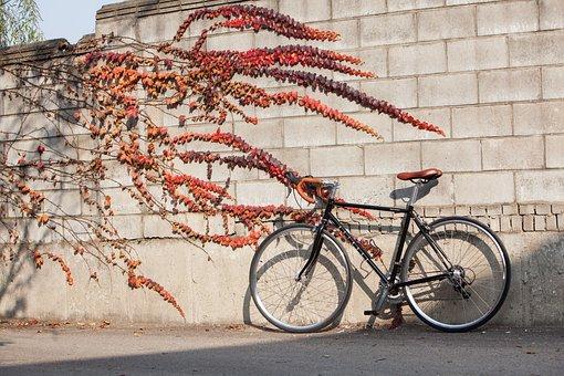 Road Bike, Road, Cycles, Smile Bike, Astro Is Smiles