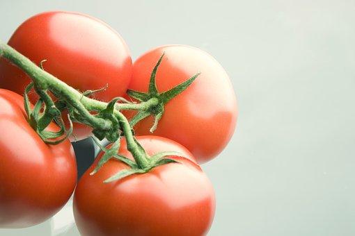 Tomato, Red, Bush Tomato, Vegetables, Food, Vegetarian