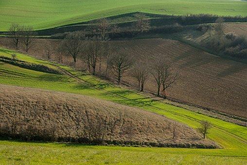 France, Lala, Fields, Prairie, Field