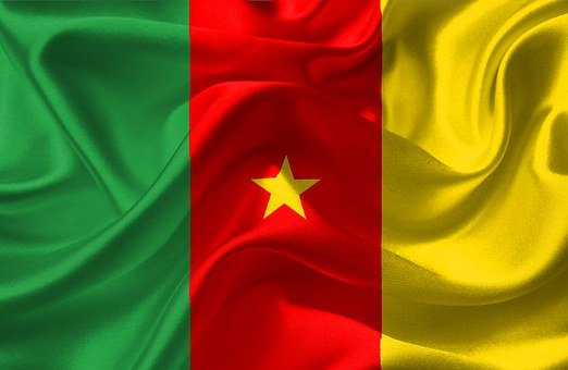 Cameroon, Flag, National, Nation, Nationality, Country