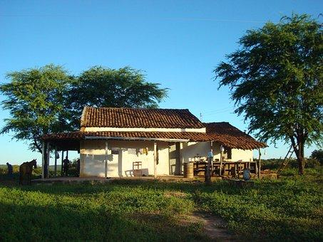 Farm, Rural, Uiraúna-pb