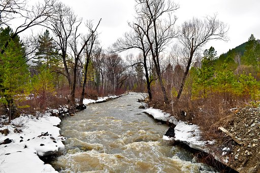Nature, Over, Snow, Trees, Water, Forest, River