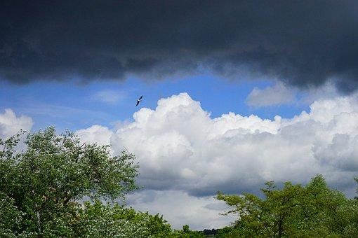 Clouds, Sky, Overcast, Dark Clouds, Forward, Storm