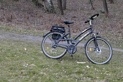 Bike, Nature, Forest, Bicycle Tour, Tour, Touring Bike