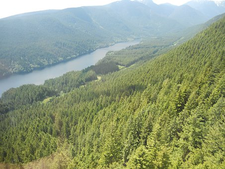 Canada, Vancouver, Nature, Grouse Grind