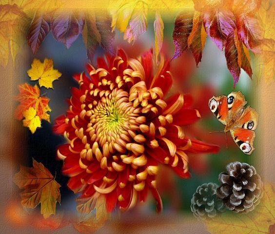 Chrysnathemum, Autumn Art, Collage, Floral, Autumn
