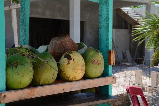 Coco, Fresh, Beach, Regional, Local, Products, Eco, Bio