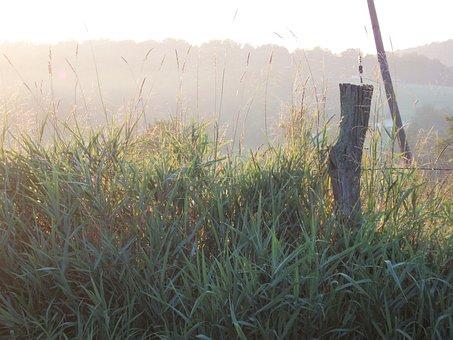 Farm, Fencepost, Rural, Dawn, Morning, Sunrise