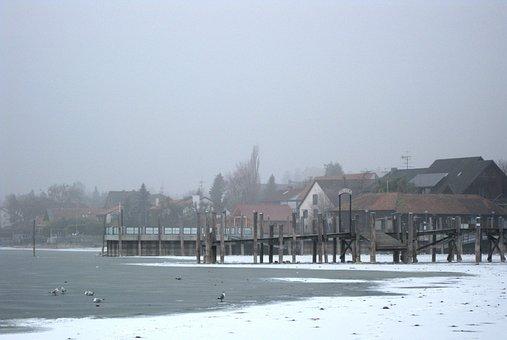 Allensbach, Frozen, Lake Constance, Winter, Web