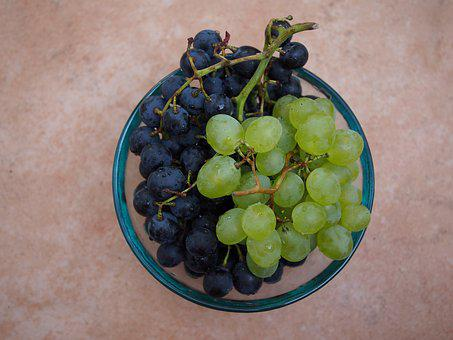 Grapes, Red, Blue, Vines, Fruit, Healthy, Vitamins