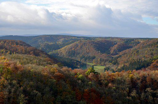 Autumn, Forest, Resin, Landscape, Golden Autumn, Emerge