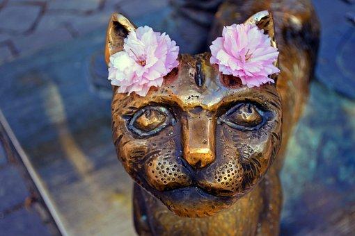 Cat, Monument, Uzhgorod, Ukraine, Flowers, Bronze