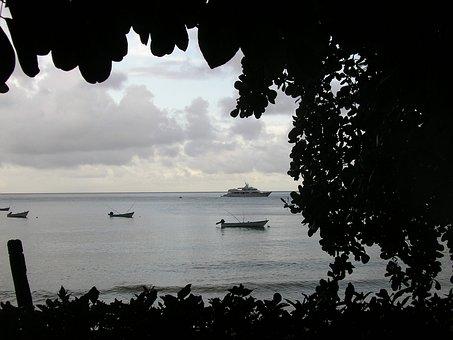Boats, Bay, Scenery, Scenic, Leaves, Tobago
