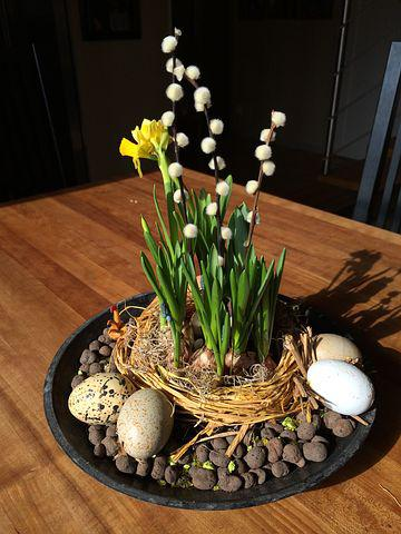 Easter, Flower, Easter Lilies