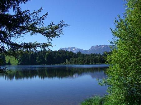Kögel Pond, Mirroring, Firs, Mountain Panorama