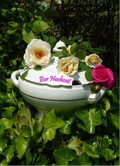 Bowl, Congratulations, Roses, Romance, Greeting, Marry