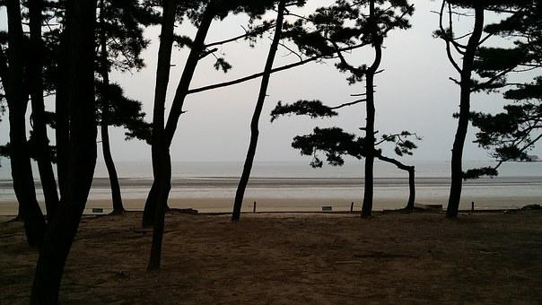 Sea, Mongsanpo, Bathing Beach, Republic Of Korea