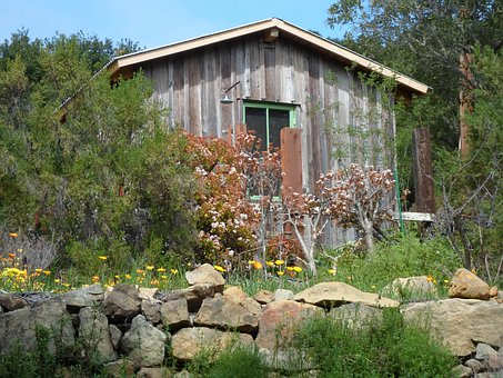 Cottage, Yards, Home, Houses, Small, Gardens, Buildings