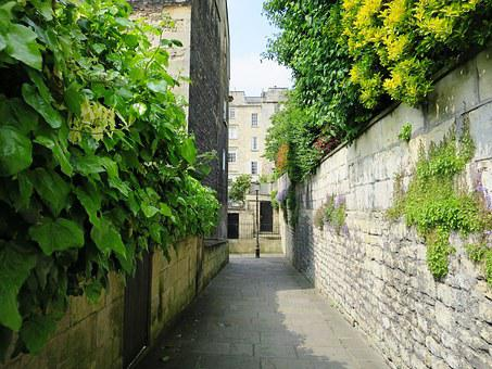England, Bath In England, Alley, Plant, Green