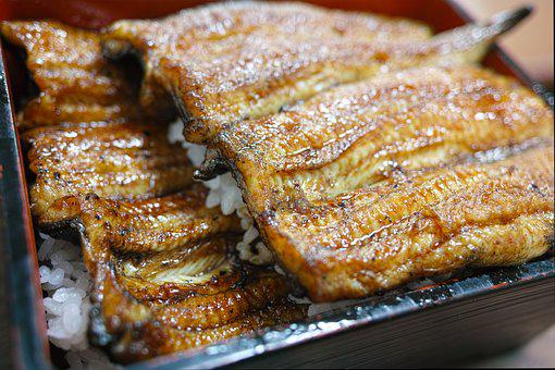 Japanese Food, Japan Food, Restaurant, Cuisine, Eel